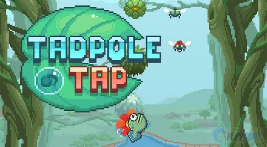 tadpole-tap-inddir